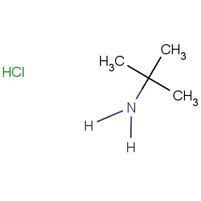 tert-butylamine hydrochloride