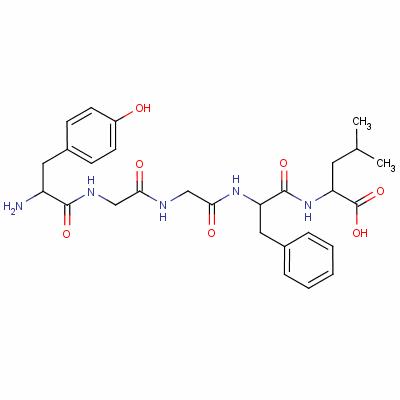 (5-leucine)enkephalin