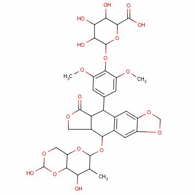 etoposide glucuronide