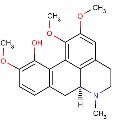 isocorydine