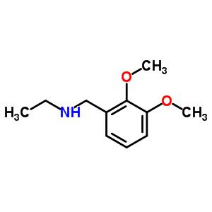 N-(2,3-dimethoxybenzyl)ethanamine