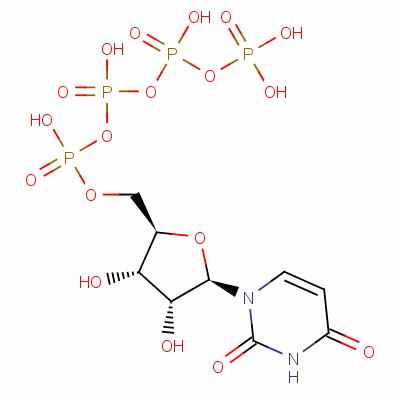 uridine 5'-tetraphosphate
