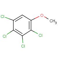 2,3,4,5-tetrachloroanisole