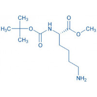 Boc-Lys-OMe acetate salt