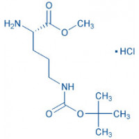 H-Orn(Boc)-OMe HCl
