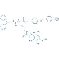 Fmoc-Arg(Mtr)-Wang resin (200-400 mesh, 0.4-0.7 mmol/g) Fmoc-Arg(Mtr)-4-alkoxybenzyl alcohol resin