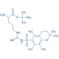 H-Arg(Pmc)-OtBu (free base)