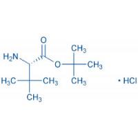H-tBu-Gly-OtBu HCl