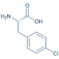 H-4-Chloro-Phe-OH