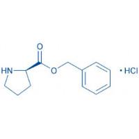 H-D-Pro-OBzl HCl