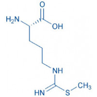 S-Methyl-L-thiocitrulline acetate salt