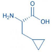 H-β-Cyclopropyl-Ala-OH