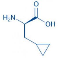 H-β-Cyclopropyl-D-Ala-OH