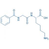 Hippuryl-Lys-OH