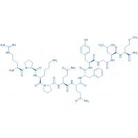 (Tyr⁸)-Substance P H-Arg-Pro-Lys-Pro-Gln-Gln-Phe-Tyr-Gly-Leu-Met-NH₂