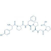 -Casomorphin (1-6) (bovine) H-Tyr-Pro-Phe-Pro-Gly-Pro-OH