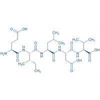 Fibronectin CS-1 Fragment (1978-1982) H-Glu-Ile-Leu-Asp-Val-OH