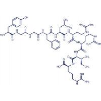 Dynorphin A (1-9) H-Tyr-Gly-Gly-Phe-Leu-Arg-Arg-Ile-Arg-OH