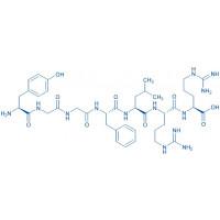 Dynorphin A (1-7) H-Tyr-Gly-Gly-Phe-Leu-Arg-Arg-OH