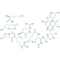 Autocamtide-2-Related Inhibitory Peptide trifluoroacetate salt H-Lys-Lys-Ala-Leu-Arg-Arg-Gln-Glu-Ala-Val-Asp-Ala-Leu-OH trifluoroacetate salt