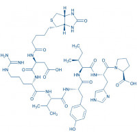 Biotinyl-Angiotensin I/II (1-7) Biotinyl-Asp-Arg-Val-Tyr-Ile-His-Pro-OH