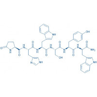 (D-Trp⁶)-LHRH (1-6) amide Pyr-His-Trp-Ser-Tyr-D-Trp-NH₂
