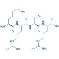 Osteoblast-Adhesive Peptide H-Lys-Arg-Ser-Arg-OH