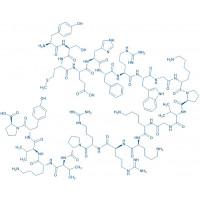 ACTH (2-24) (human, bovine, rat) trifluoroacetate salt H-Tyr-Ser-Met-Glu-His-Phe-Arg-Trp-Gly-Lys-Pro-Val-Gly-Lys-Lys-Arg-Arg-Pro-Val-Lys-Val-Tyr-Pro-OH trifluoroacetate salt