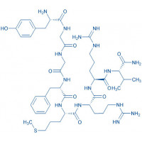 Metorphamide H-Tyr-Gly-Gly-Phe-Met-Arg-Arg-Val-NH