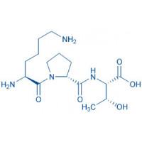 (D-Pro¹⁹⁴)-IL-1β (193-195) (human) H-Lys-D-Pro-Thr-OH