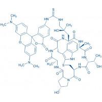 ((R)-4-Hydroxy-4-methyl-Orn(TRITC)⁷)-Phalloidin Cyclo(-Ala-D-Thr-Cys-cis-Hyp-Ala-Trp-(4R)-4-hydroxy-4-Me-Orn(TRITC))(Sulfide bond between Cys and indol-2-yl)