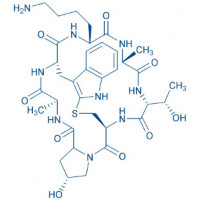 (Lys)-Phalloidin trifluoroacetate salt Cyclo(-Ala-D-Thr-Cys-cis-Hyp-Ala-Trp-Lys) trifluoroacetate salt(Sulfide bond between Cys and indol-2-yl)