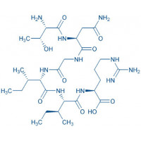 Ovalbumin (154-159) trifluoroacetate salt H-Thr-Asn-Gly-Ile-Ile-Arg-OH trifluoroacetate salt