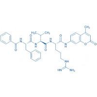 Bz-Phe-Val-Arg-AMC hydrochloride salt