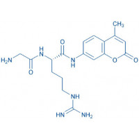 H-Gly-Arg-AMC hydrochloride salt