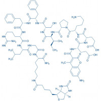 AMCA-Glu-Glu-Lys-Pro-Ile-Ser-Phe-Phe-Arg-Leu-Gly-Lys(biotinyl)-NH