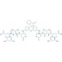(H-Asp-Glu-Val-Asp)₂-Rhodamine 110 trifluoroacetate salt
