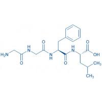 (Des-Tyr)-Leu-Enkephalin H-Gly-Gly-Phe-Leu-OH