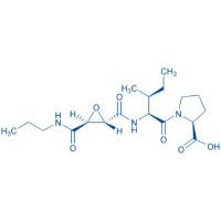 L-trans-Epoxysuccinyl-Ile-Pro-OH propylamide