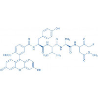 Fluorescein-6-carbonyl-Tyr-Val-Ala-DL-Asp(OMe)-fluoromethylketone