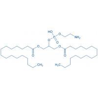 1,3-Dipalmitoyl-glycero-2-phosphoethanolamine