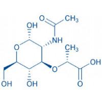 Ac-muramic acid