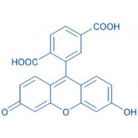 6-Carboxy-fluorescein