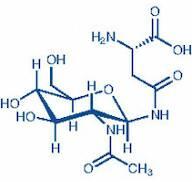 AADG, N-g-(2-Acetamido-2-deoxy-b-D-gluco-pyranosyl)-L-asparagine, Aspartylglucosamine