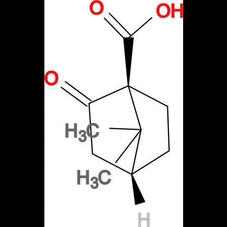 (S)-(+)-Ketopinic acid