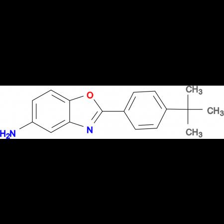 2-(4-tert-Butylphenyl)benzooxazol-5-ylamine