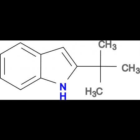 2-tert-Butyl-1H-indole