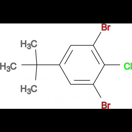 4-Chloro-3,5-dibromo-tert-butylbenzene