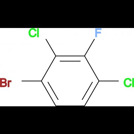 2,4-Dichloro-3-fluorobromobenzene