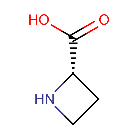L-Azetidine-2-carboxylic acid